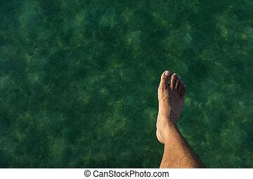 hopp, in i, den, ocean