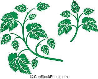 hops leaf design (hops plant, hop symbol, hop leaves, hop...