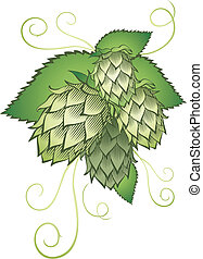 hops with leafs