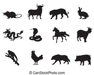 horóscopo, chino, iconos