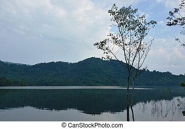 hora, strom, jezero, grafické pozadí, krajina
