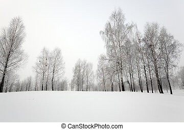 horaire hiver, neige