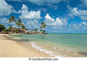 horgonykapák, épület, bitófák, óceán, érintetlen, fényűzés, háttér, égszínkék, tengerpart, homokos