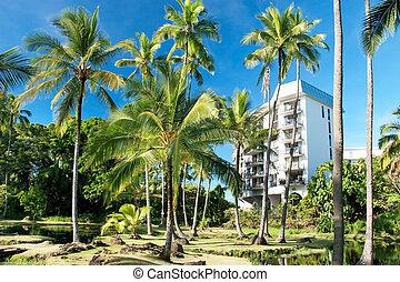 horgonykapák, hotel, hawaii, bitófák, fényűzés, háttér