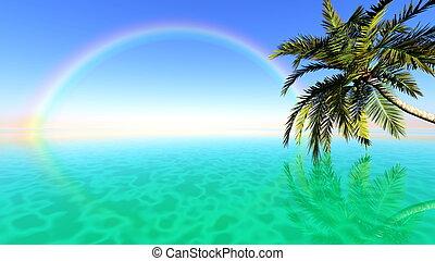 horizon and rainbow
