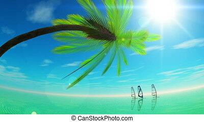 horizon and wind surfing
