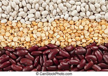 arrangement of assorted beans