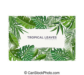Horizontal background with green tropical leaves of jungle trees. Elegant backdrop decorated with frame made of foliage of exotic plants. Natural seasonal border. Colorful vector illustration.
