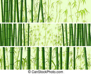 Horizontal banner with bamboos. - Vector abstract horizontal...