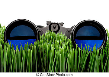 Horizontal close-up of binoculars on green grass with a white background