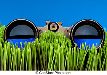 Horizontal close-up of binoculars on green grass with a blue...