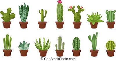horizontal, ensemble, salle, plat, illustration, dessin animé, arrière-plan., vecteur, vert, désert, blanc, élément, bannière, style., cactus., design.