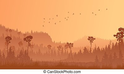 Horizontal illustration of forest with grass at sunset.