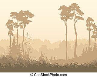 Horizontal illustration of misty forest glade.
