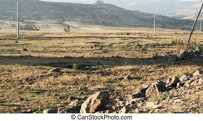 Horizontal panorama of hilly landscape with savanna in ethiopia