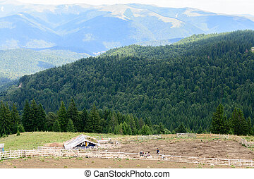 Horizontal view with sheepfold and mountains. Wooden sheepfold in Carpathians near mountain range.