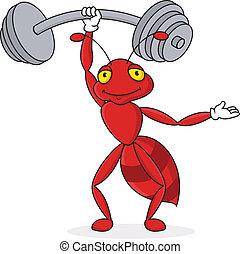 hormiga, fuerte, carácter, caricatura, rojo