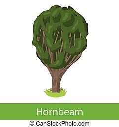 Hornbeam cartoon tree. Single illustration on a white background