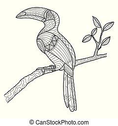 hornbill, dessiné, coloration, page, main