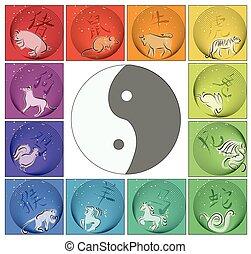 horoscope, yin, autour de, chinois, yang