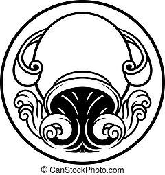 horoskop, wassermann, geburt, zeichen