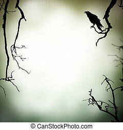 Horror background - Scary scene with raven silhouette