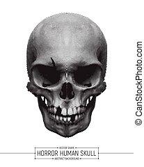 horror, vector, cráneo humano