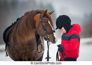 Horse and boy - riding horseback - Child and bay horse in...