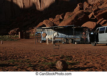 Horse and car with a trailer in Arizona