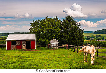 Horse and red stable in a field in Southern York County, Pennsylvania.