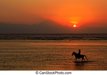Horse and rider on beach at sunset