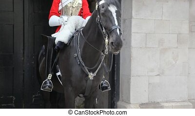 horse and unidentified guard in uniform in London