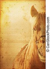 Horse Background - Beautiful horse on old nostalgic...