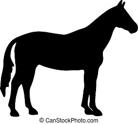 horse black silhouette. Vector illustration.