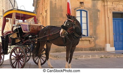 Horse carriage and Malta flag - Horse and carriage or coach...