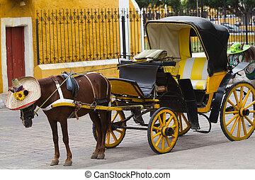 horse carriage in izamal
