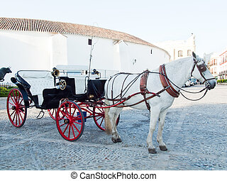 Horse  carriage in Ronda. front bullfighting arena
