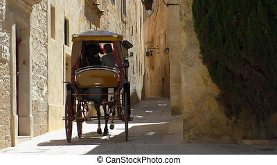 Horse carriage narrow street,back - Rear view of one horse...