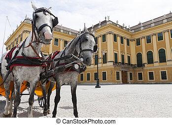 horse carriage near Schonbrunn  palace, Vienna, Austria