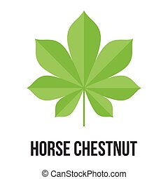 horse chestnut leave alternative medicine, flat desigh