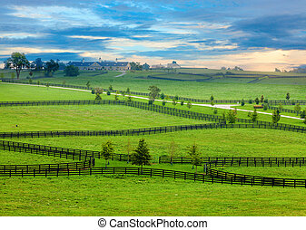 Horse country - Scenic overlook of a horse farm in Central ...