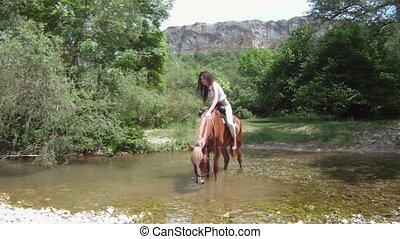 Horse crossing a river