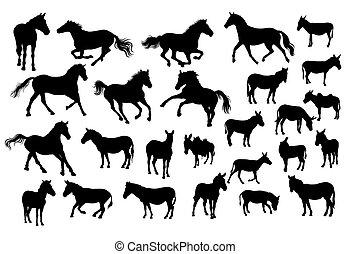 Horse, Donkey and Zebra Silhouettes