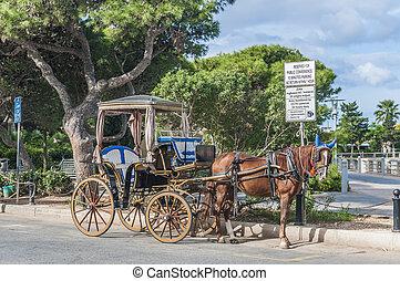 Horse-drawn Buggy in Mdina, Malta - Horse-drawn Buggy...