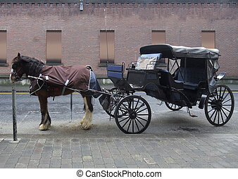 horse-drawn carriage in Dublin - the Crane Street with...