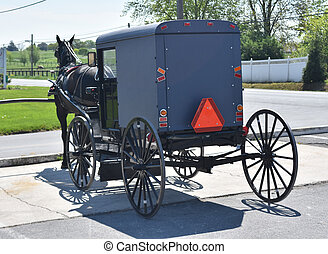Horse Drawn Carriage Parked in Lancaster County - Lancaster...