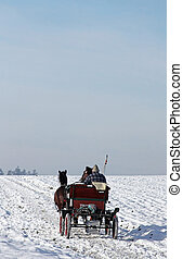 Horse-Drawn Carriage - This image shows a driving...