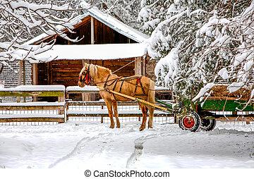 Horse Drawn Cart On Winter Scene