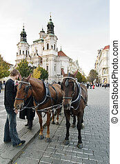 Horse Drawn Cart - A horse drawn cart in the old part of...