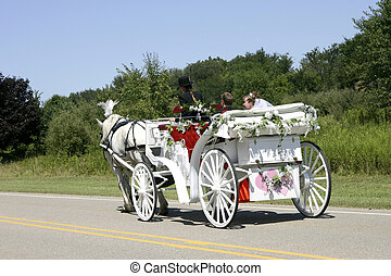 Horse-drawn newlyweds - Newly-wed couple in a white,...